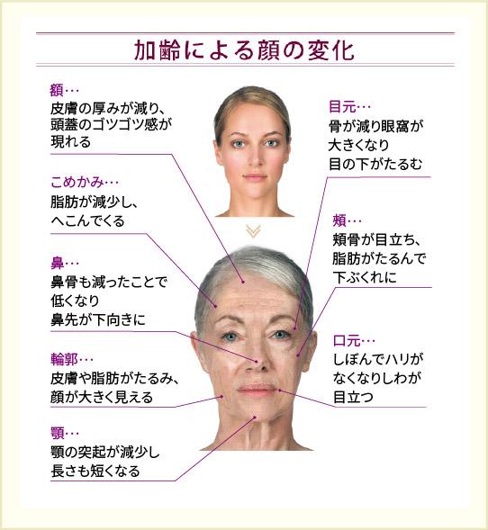 加齢による顔の変化