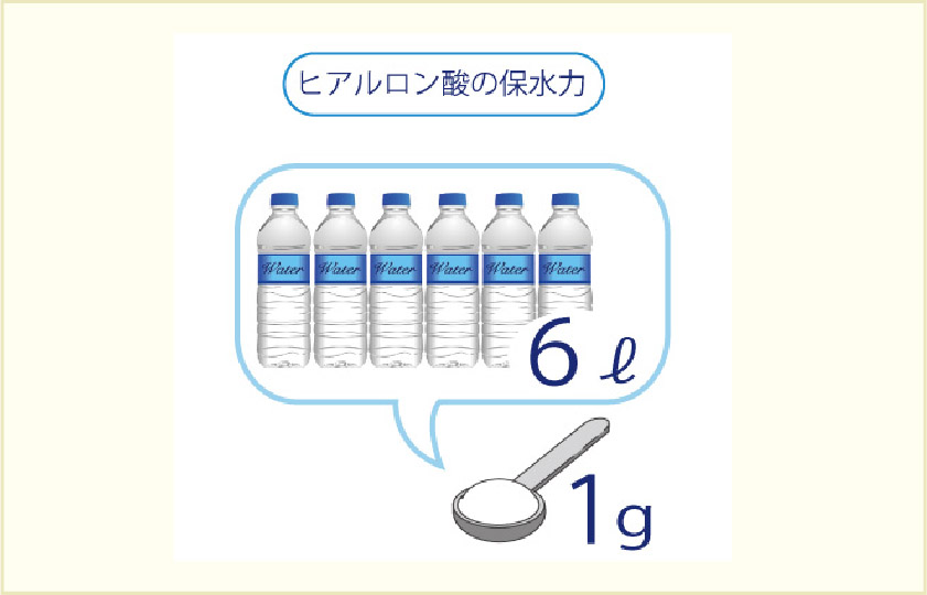 ヒアルロン酸の保水力